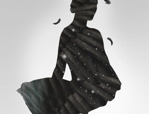 Black Swan by Sof Sofroniou